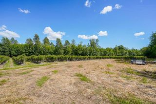 Photo 18: 21.44AC 240 STREET in Langley: Langley City Agri-Business for sale : MLS®# C8038637