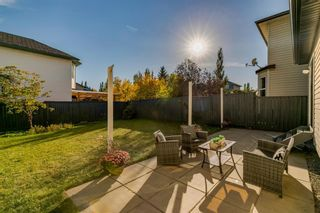 Photo 29: 11 Bridlewood Gardens SW in Calgary: Bridlewood Detached for sale : MLS®# A1149617