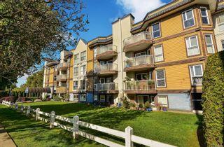 Photo 2: 104 2529 Wark St in : Vi Hillside Condo for sale (Victoria)  : MLS®# 874159