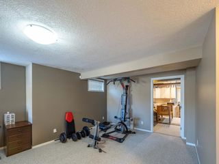 Photo 25: 260 Harvest Grove Place NE in Calgary: Harvest Hills Residential for sale : MLS®# A1062978