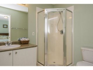 Photo 13: 10274 242B Street in Maple Ridge: Albion House for sale : MLS®# R2039833