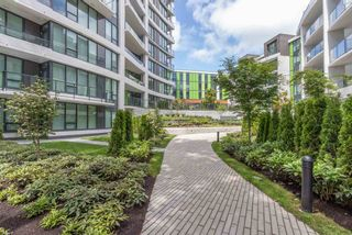 Photo 28: 503 3533 ROSS Drive in Vancouver: University VW Condo for sale (Vancouver West)  : MLS®# R2480878