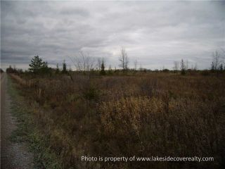 Photo 18: 2489 Concession Road 3 Road in Ramara: Brechin Property for sale : MLS®# X3371303