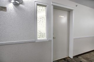 Photo 37: 3225 6818 Pinecliff Grove NE in Calgary: Pineridge Apartment for sale : MLS®# A1053438