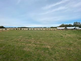 Photo 28: TWP RD 583 Range Rd 271: Rural Westlock County Rural Land/Vacant Lot for sale : MLS®# E4218433