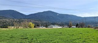 Photo 34: 49955 PRAIRIE CENTRAL Road in Chilliwack: East Chilliwack House for sale : MLS®# R2560469