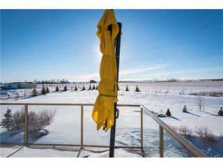 Photo 30: 48142 320 Avenue E: Rural Foothills M.D. House for sale : MLS®# C4098946