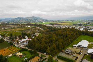 Photo 12: 718 MCKENZIE Road in Abbotsford: Poplar Land for sale : MLS®# R2510205