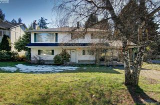 Photo 36: 1519 Winchester Rd in VICTORIA: SE Mt Doug House for sale (Saanich East)  : MLS®# 806818