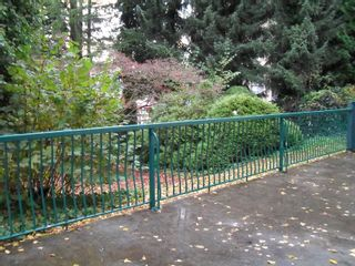 """Photo 15: #104 33598 GEORGE FERGUSON WAY in ABBOTSFORD: Central Abbotsford Condo for rent in """"NELSON MANOR"""" (Abbotsford)"""