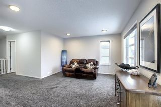Photo 19: 16 Walden Mount SE in Calgary: Walden Residential for sale : MLS®# A1053734