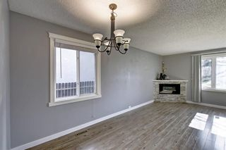 Photo 11: 4604 Maryvale Drive NE in Calgary: Marlborough Detached for sale : MLS®# A1090414