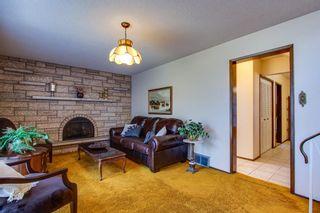 Photo 17: 10424 39A Avenue in Edmonton: Zone 16 House for sale : MLS®# E4264425