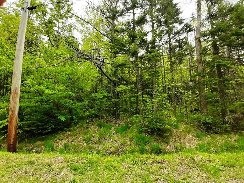 Main Photo: Lot N1 Nature Haven Road in Lake Paul: 404-Kings County Vacant Land for sale (Annapolis Valley)  : MLS®# 202009523