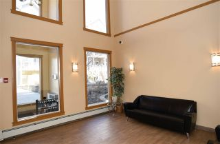 Photo 37: 407 10121 80 Avenue in Edmonton: Zone 17 Condo for sale : MLS®# E4240239