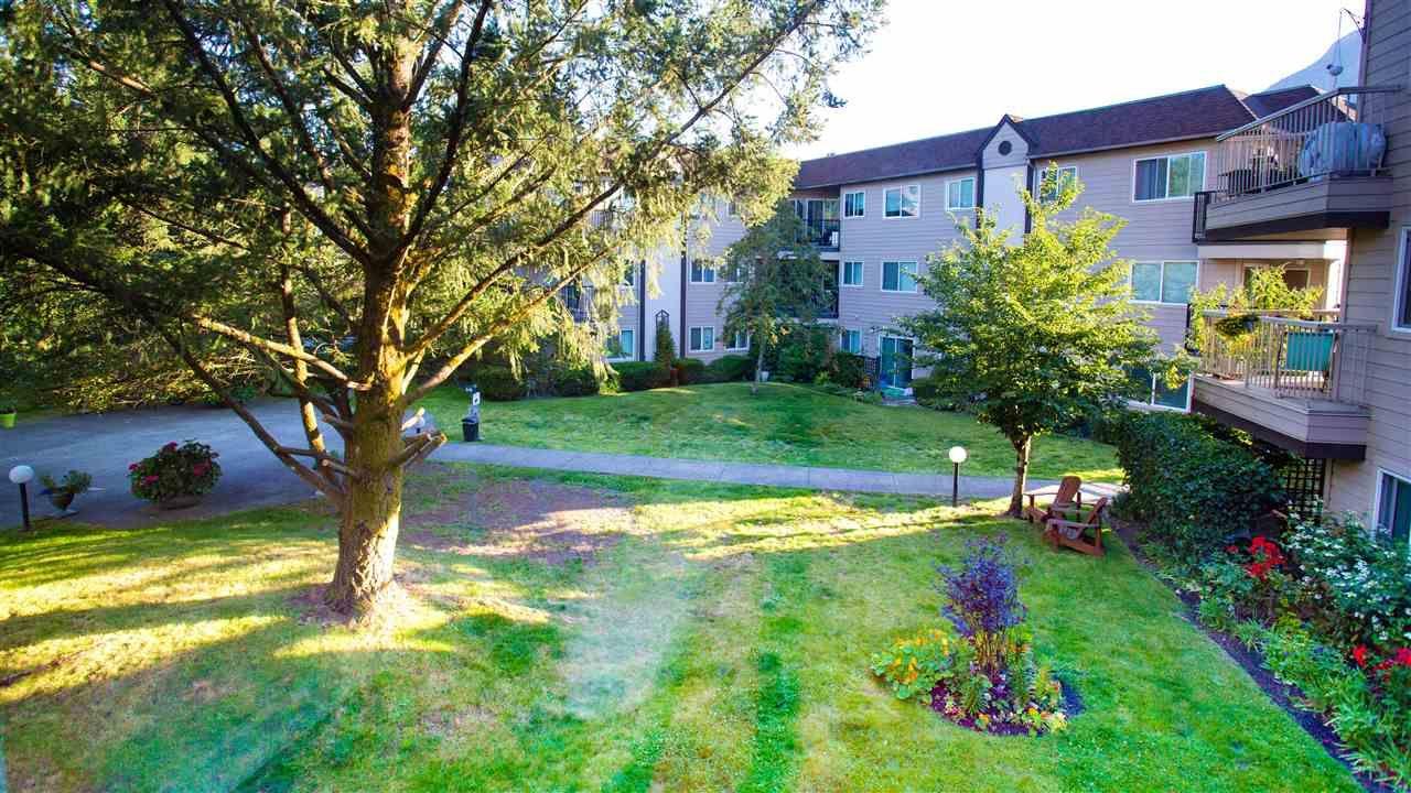 """Main Photo: B208 40120 WILLOW Crescent in Squamish: Garibaldi Estates Condo for sale in """"DIAMOND HEAD"""" : MLS®# R2533251"""