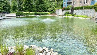 """Photo 19: 108 1200 EASTWOOD Street in Coquitlam: North Coquitlam Condo for sale in """"LAKESIDE TERRACE"""" : MLS®# R2466564"""