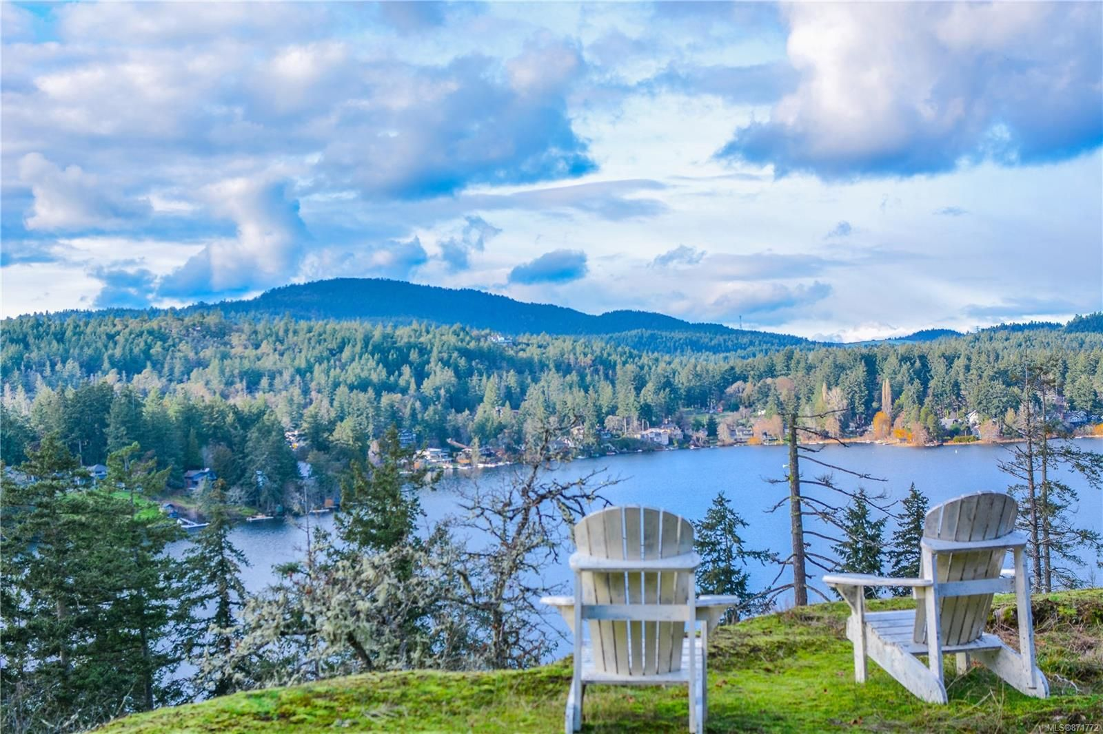 Main Photo: 236 Stevens Rd in : SW Prospect Lake House for sale (Saanich West)  : MLS®# 871772