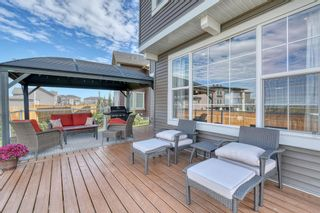 Photo 44: 137 Sandpiper Point: Chestermere Detached for sale : MLS®# A1021639