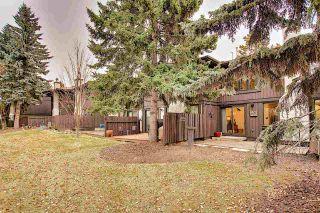 Photo 34: 169 HEARTHSTONE in Edmonton: Zone 14 Townhouse for sale : MLS®# E4219809
