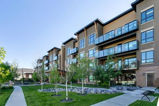 Photo 46: 408 145 Burma Star Road SW in Calgary: Currie Barracks Apartment for sale : MLS®# A1120327