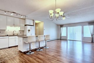 Photo 16: 509 55 ARBOUR GROVE Close NW in Calgary: Arbour Lake Apartment for sale : MLS®# A1096357