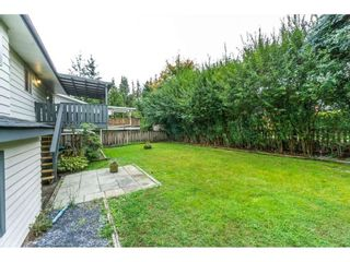 Photo 29: 20250 48 AVENUE in Langley: Langley City Home for sale ()  : MLS®# R2305434