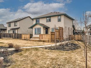 Photo 41: 69 Thornfield Close SE: Airdrie Detached for sale : MLS®# A1093545