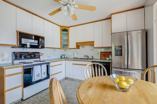 Photo 5: 17 Fay Road SE in Calgary: Fairview Detached for sale : MLS®# A1130756