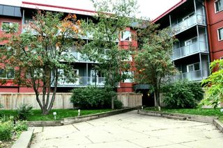Main Photo: 323 333 Garry Crescent NE in Calgary: Greenview Apartment for sale : MLS®# A1147338