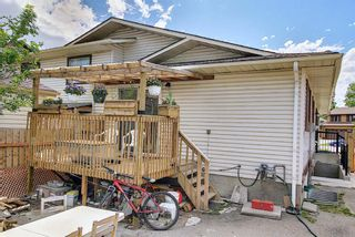Photo 31: 217 Templemont Drive NE in Calgary: Temple Semi Detached for sale : MLS®# A1120693