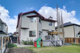 Photo 45: 131 Springmere Drive: Chestermere Detached for sale : MLS®# A1136649