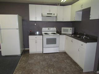 Photo 2: BSMT 3293 HORN ST in ABBOTSFORD: Central Abbotsford Condo for rent (Abbotsford)