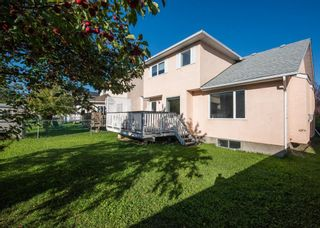 Photo 43: 186 Coral Springs Boulevard NE in Calgary: Coral Springs Detached for sale : MLS®# A1146889