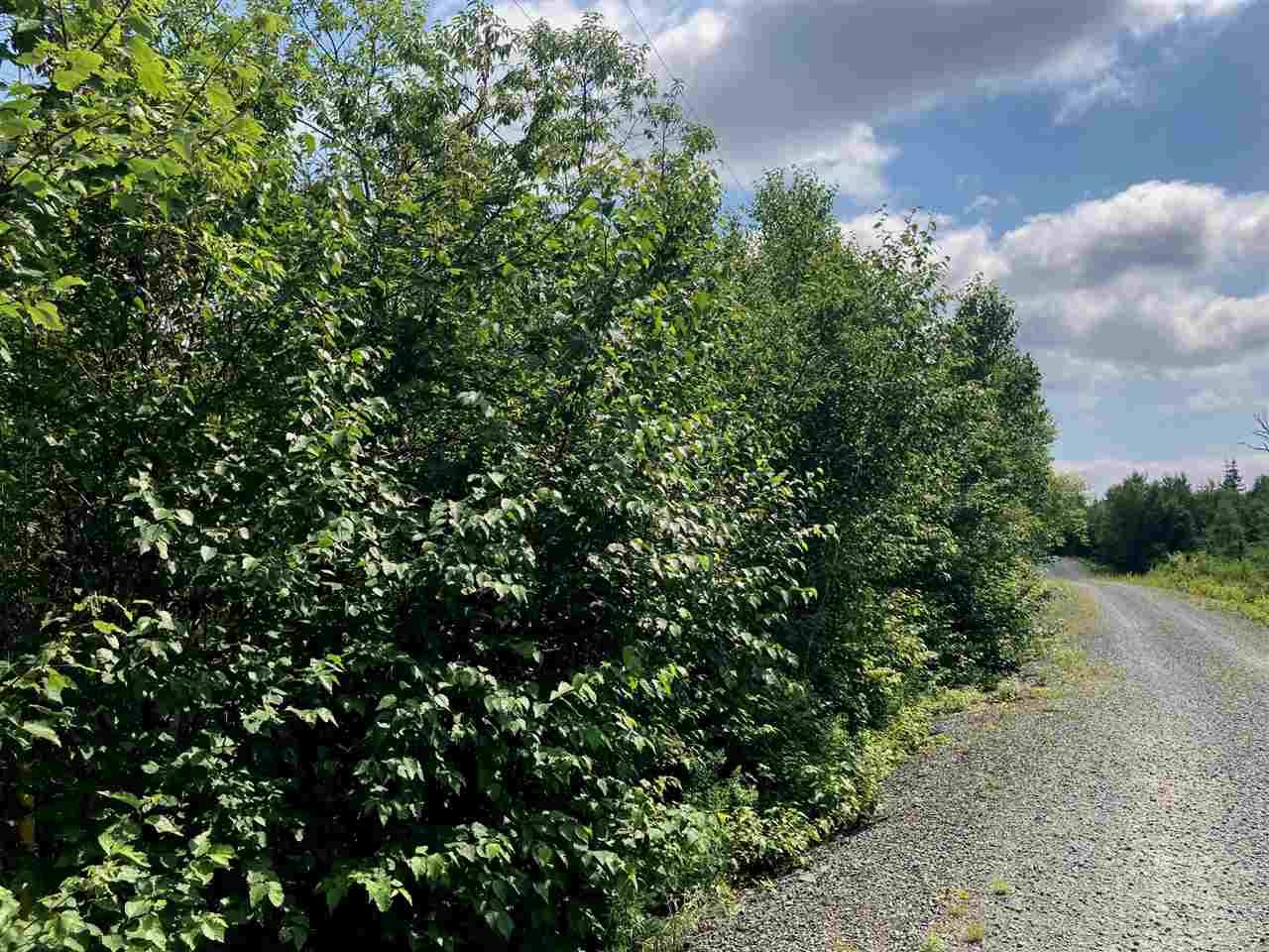 Photo 7: Photos: Lot 6 Anderson Drive in Goldenville: 303-Guysborough County Vacant Land for sale (Highland Region)  : MLS®# 202016652