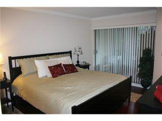"Photo 6: 116 2978 BURLINGTON Drive in Coquitlam: North Coquitlam Condo for sale in ""THE BURLINGTON"" : MLS®# V939111"