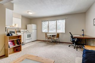 Photo 33: 2108 51 Avenue SW in Calgary: North Glenmore Park Detached for sale : MLS®# A1058307