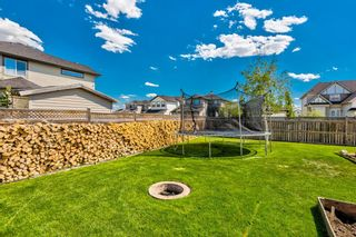 Photo 44: 207 Willowmere Way: Chestermere Detached for sale : MLS®# A1114245
