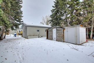 Photo 47: 429 1 Avenue NE: Airdrie Detached for sale : MLS®# A1071965