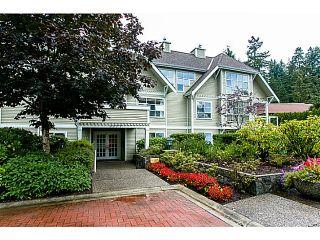 """Photo 1: 206 3377 CAPILANO Crescent in North Vancouver: Capilano NV Condo for sale in """"CAPILANO ESTATES"""" : MLS®# V1049079"""
