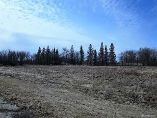 Photo 3: 4100 St Mary's Road in Winnipeg: South St Vital Residential for sale (South East Winnipeg)  : MLS®# 1607005