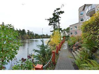 Photo 16: 310 1085 Tillicum Rd in VICTORIA: Es Kinsmen Park Condo for sale (Esquimalt)  : MLS®# 725059