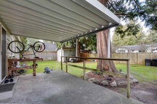 Photo 4: 1437 DUNCAN Drive in Delta: Beach Grove House for sale (Tsawwassen)  : MLS®# R2537198