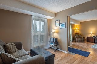 Photo 23: 132 70 WOODLANDS Road: St. Albert Carriage for sale : MLS®# E4261365