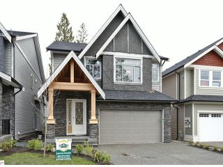 """Main Photo: 7668 210TH Street in Langley: Willoughby Heights House for sale in """"YORKSON"""" : MLS®# F1308728"""