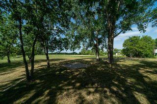 Photo 22: 125 Turnbull Drive in Winnipeg: St Norbert Residential for sale (1Q)  : MLS®# 202116838