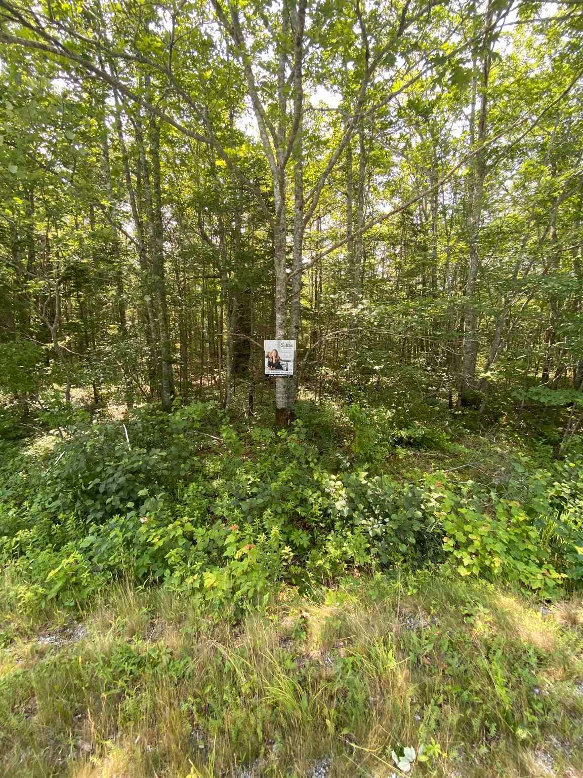Main Photo: Lot 103 Highway in East Port L'Hebert: 406-Queens County Vacant Land for sale (South Shore)  : MLS®# 202115875