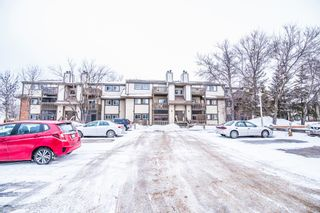 Photo 22: 203 491 Mandalay Drive in Winnipeg: Maples Condominium for sale (4H)  : MLS®# 1701517