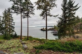 Photo 11: 1090 Silver Spray Dr in : Sk Silver Spray Land for sale (Sooke)  : MLS®# 862588