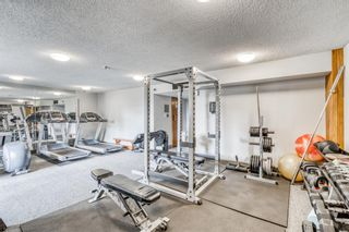 Photo 18: 307 30 McHugh Court NE in Calgary: Mayland Heights Apartment for sale : MLS®# A1138265